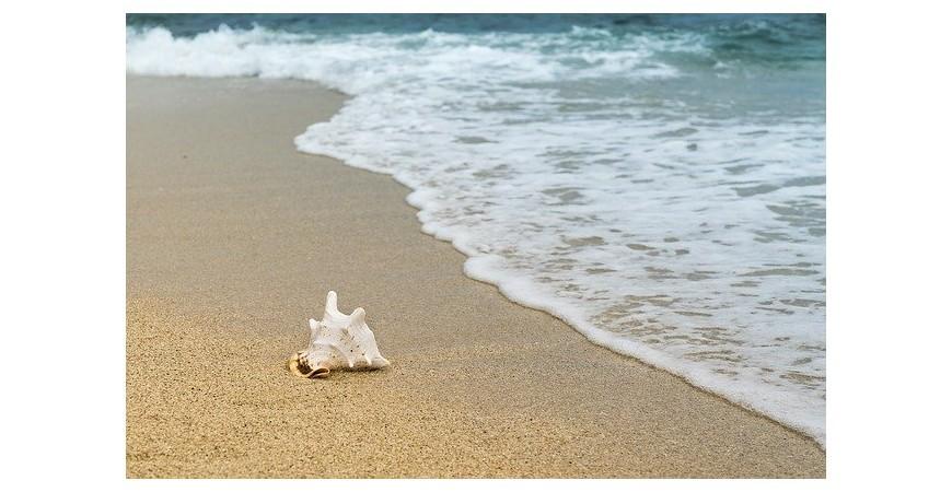 Playas adaptadas para minusválidos en Cataluña
